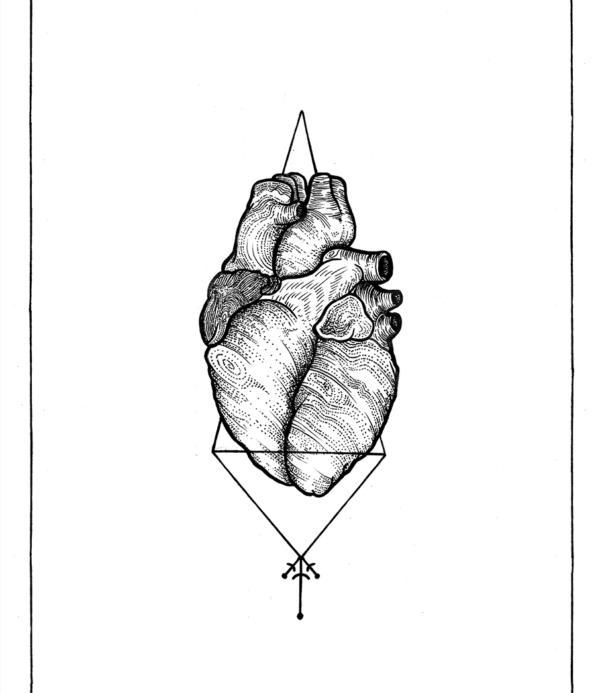 Anatomic Heart - Rune Carls